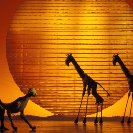 'CIRCLE OF LIFE' - Photo of London Production by Catherine Ashmore
