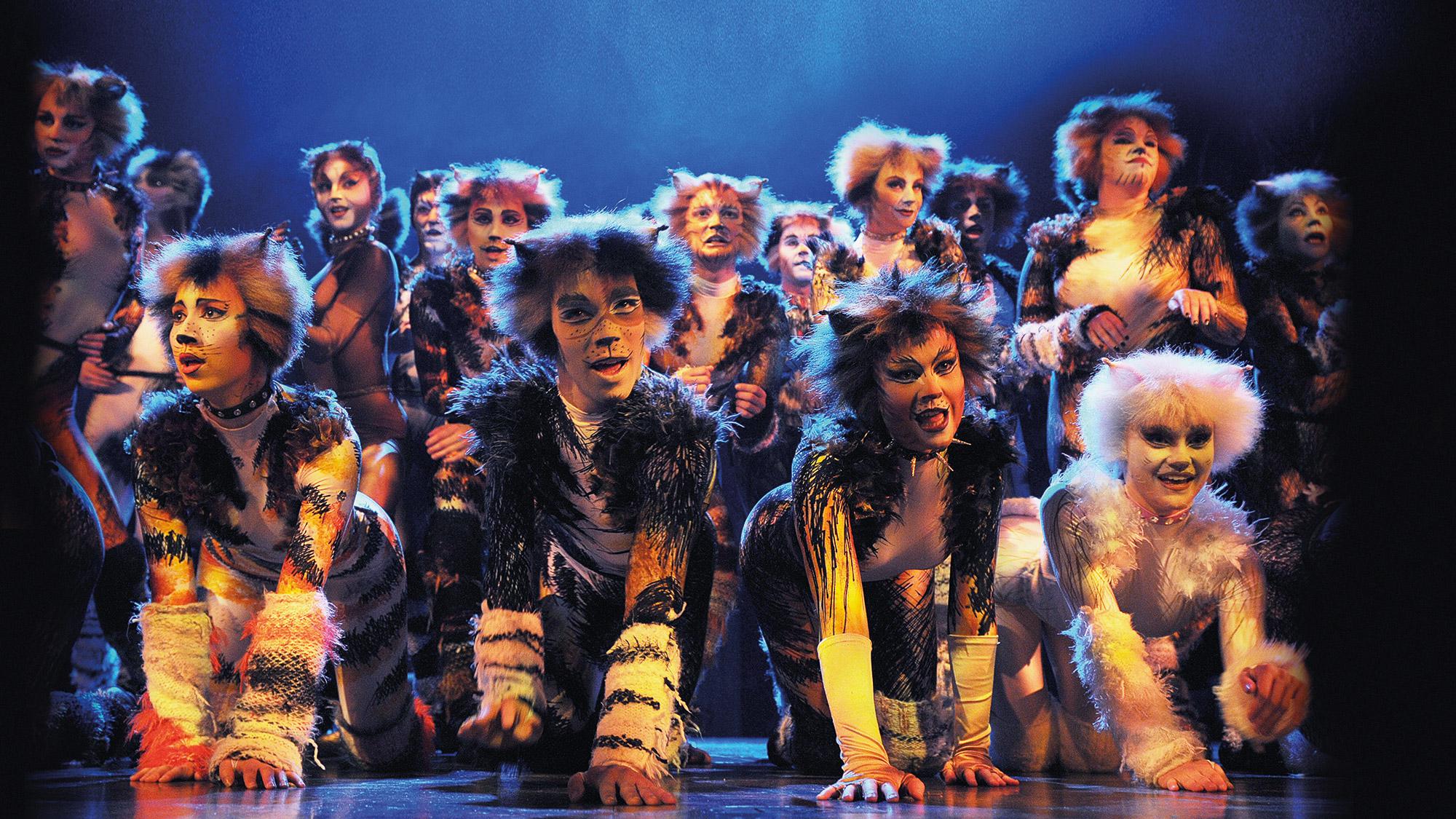 Cats Musical H Ef Bf Bdren