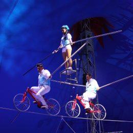 Circus Nock - The Robles 2016