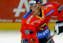 Eishockey Playoffs - Franz Steffen