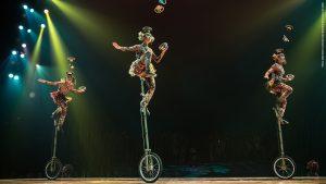 cirque-du-soleil-totem-05